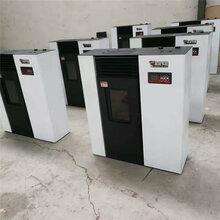 采暖炉家用厂家直销智能取暖设备颗粒真火壁炉图片