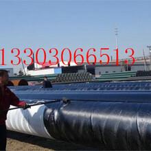 实体生产衡水哪里有(ipn8710防腐钢管)厂家%价格图片