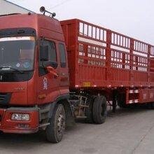 无锡到深圳大件运输公司