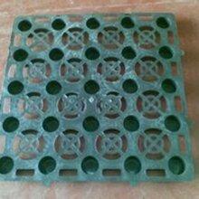 青岛排水板制造商