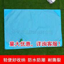 便捷防水涂层210T抗撕裂格子布野餐垫图片