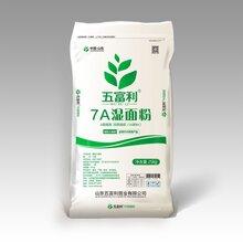 山东五富利面粉,7A湿面粉图片