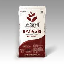 山东五富利面粉,8A包点粉,最高品质小麦面粉图片