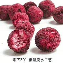 果蔬脆生产厂家图片