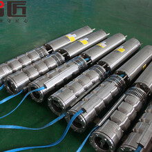 井用溫泉泵廠家--天津智匠泵業圖片
