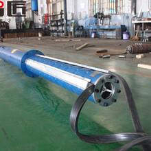 山西10KV潛水泵多少錢--天津智匠泵業圖片