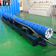 山西礦井臥式潛水泵服務電話--天津智匠泵業圖片