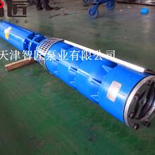 井用潛水泵優質品牌圖片