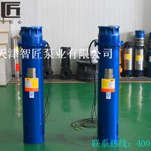 井用溫泉泵外形圖索取--天津智匠泵業圖片