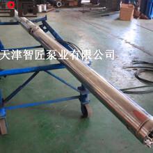 溫泉深井泵外形圖索取--天津智匠泵業圖片