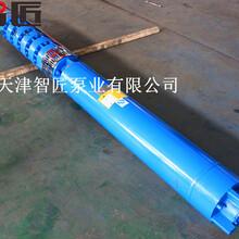 溫泉深井泵提供曲線圖--天津智匠泵業圖片