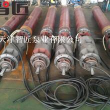 井用溫泉泵質量怎么樣--天津智匠泵業圖片