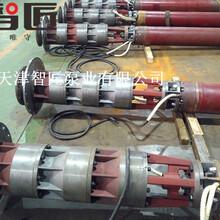井用溫泉泵型號解釋--天津智匠泵業圖片