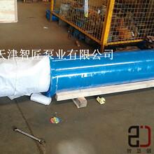 溫泉井用潛水泵現貨--天津智匠泵業圖片