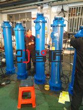 吉林倾斜式潜水泵公司图片
