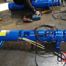 花蓮縣下吸式潛水泵質量怎么樣--天津智匠泵業圖片