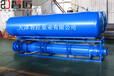 宁德特种工况潜水泵参数说明--天津智匠泵业