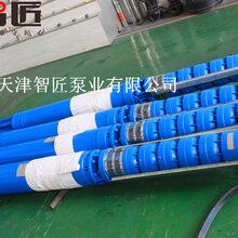 井用潜水泵品牌--天津智匠泵业图片