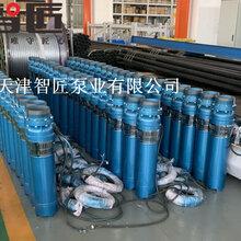 北京高扬程潜水泵外形图索取--天津智匠泵业图片