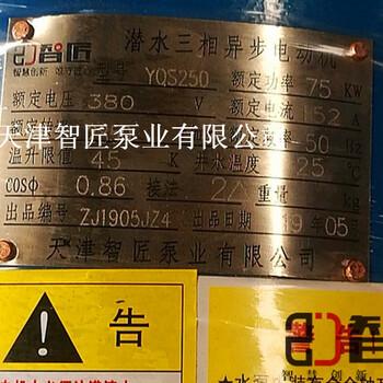重庆井用潜水泵优惠促销--天津智匠泵业