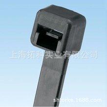 泛达(PANDUIT)尼龙金属探测型扎带线束