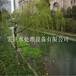 宁波宏旺河道清淤设备,河道整治工程厂家直销为您造纸最优?#23454;?#35774;备