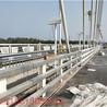 桥梁河道防撞护栏厂家生产制造