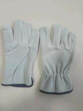 安徽防护皮手套定做价格图片