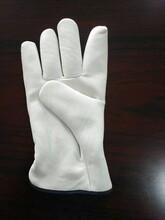 河北防护手套厂家图片