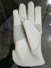 上海防护手套生产厂家供应商图片