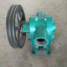 杰力信CB-7.5電動高粘度齒輪泵廠家直銷高粘度齒輪泵價格圖片