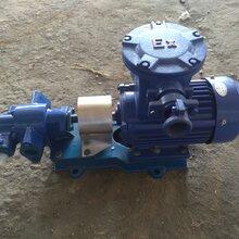 KCB帶安全閥電動齒輪泵生產廠家圖片