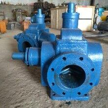 YCB40-0.6圆弧齿轮泵杰力信厂家直销圆弧齿轮泵厂家图片