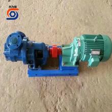 高粘度泵油漆油脂输送泵不锈钢高粘度齿轮泵图片