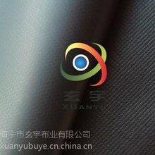 现货供应0.55厚680克PVC涂层夹网布,充气膜布,拳击擂台包边布图片