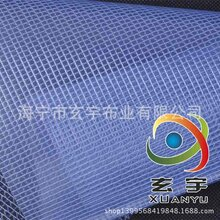 现货供应带蓝光透明网格布透明夹网布透明格子布图片