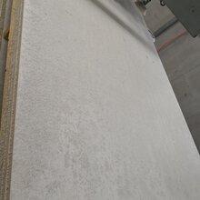 廣東增強纖維硅酸鹽防火板綠筑硅酸鹽防火板廠家批發圖片