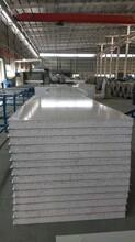 高密度泡沫板泡沫夾芯板優質泡沫企口板夾芯彩鋼板圖片