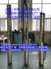 300QH不锈钢潜水泵不锈钢潜水泵厂家图片