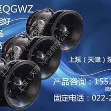 大型泵站用全貫流泵QGWZS排水專家全貫流泵圖片