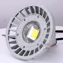 XQL8030防爆燈,30W電站防爆照明燈