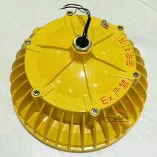 XQL8033防爆灯,50W化工厂房防爆灯