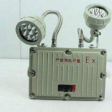 BCJ51倉庫消防應急燈,6W防爆照明應急燈