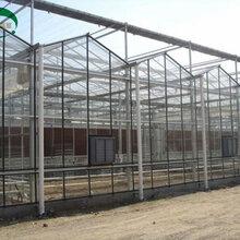 圣亚制造农业智能温室大棚玻璃智能温室价格温室大棚骨架