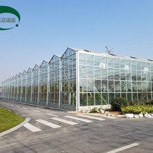 圣亚制造文洛式玻璃温室工程玻璃温室造价玻璃温室大棚制造