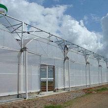圣亚厂家生产连栋薄膜温室造价薄膜温室骨架拱形温室制造