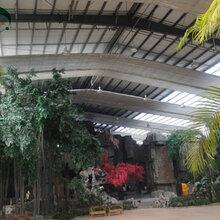 圣亚制造生态餐厅温室餐厅设计及施工生态餐厅造价