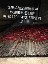 厂家生产玻璃化工机械玻璃窑炉机械退火炉网带链条,输送机械图片