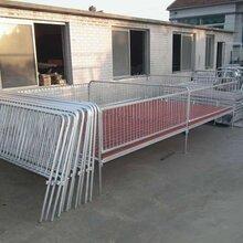 供应养猪设备猪床定位栏保育栏母猪产床猪杠