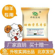 母羊预混料妊娠哺乳奶羊饲料4%种羊预混料增加产奶量